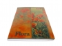 25501 - zeszyt A5 w linie  80 kartek, okładka miękka