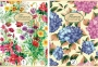 281593_ - kołonotatnik A4 w linię Pigna Nature Flowers 60 kartek, 2 szt./op.