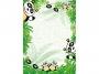 3600315 - papier, karton ozdobny A4 170g Argo Dyplom Panda 25 ark./op.