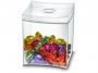 7775501 - pojemnik, pudełko na słodycze, cukierki, ciastka Cep Take a Break 0,6l transparentny