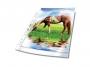 d267719 - koszulka na dokumenty A4 Durable Premium PP, kształt U, krystaliczna, 80mic, 50 szt. /op.