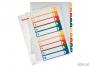 e100213 - przekładki do segregatora A4 numeryczne 1-10 Esselte plastikowe, z możliwością nadruku na karcie opisowej