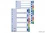 e15263 - przekładki do segregatora A4 PP Esselte plastikowe 20 kart