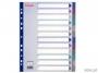 e20649 - przekładki do segregatora A4 Maxi PP Esselte Multicolor 12 kart